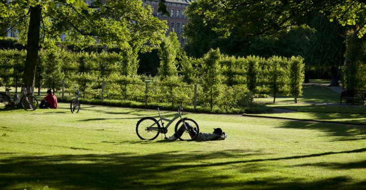 Copenhagen and Zealand in the summertime